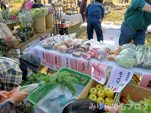 朝霞の森秋まつり野菜売り場
