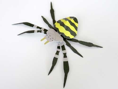 小学館の図鑑NEOシリーズのクモ